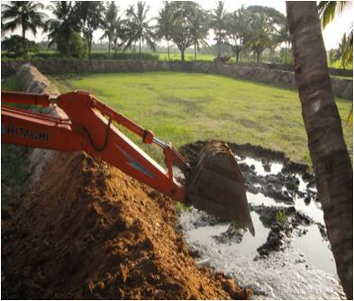 Fish Pond Construction Agropedia